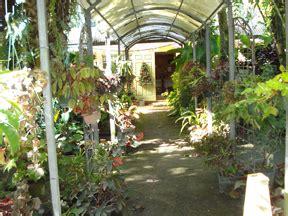 Palm Hammock Orchid Estate shade plants sun plants butterfly plants vines plants aquatic plants ground
