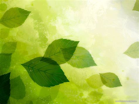 powerpoint themes leaves powerpoint presentation slides background green