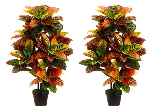 outdoor potted trees artificial croton plants croton plant outdoor