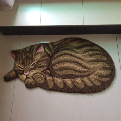 cat on rugs deck your floors with sleeping kitties petslady