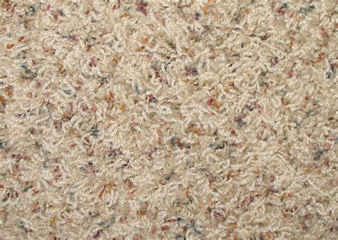 carpet reviews frazee carpet reviews home everydayentropy com