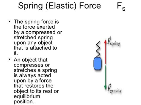 what is a spring types of forces foldable