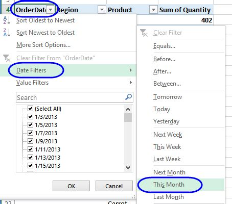 dates in pivot table pivot table report filter by month brokeasshome com
