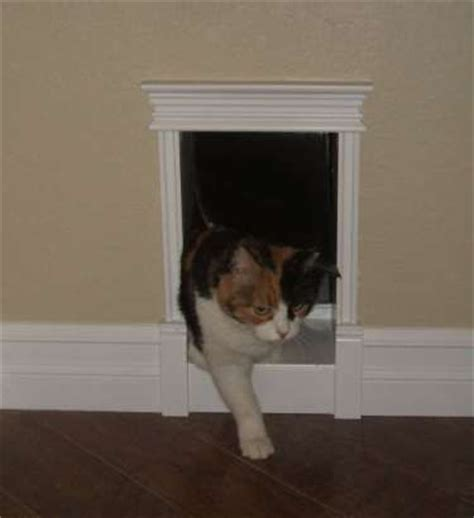 interior cat door interior door cat door for interior door