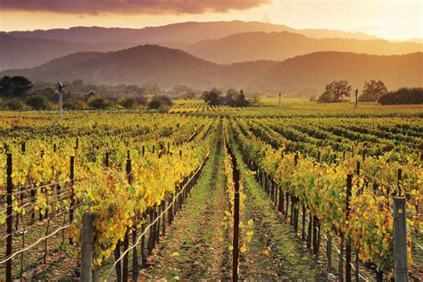 napa valley set of 2 put these sonoma wines on your radar