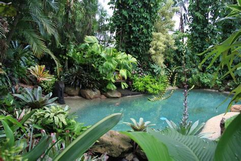 How To Create A Tropical Backyard by Shaun S Pool Dennis Hundscheidt Landscaping