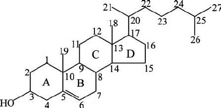 structure  nomenclature  cholesterol ring