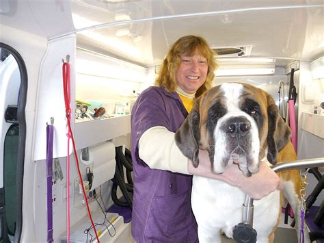 sudzy puppy will travel sudzy dogz brings pet grooming to your doorstep sequim gazette