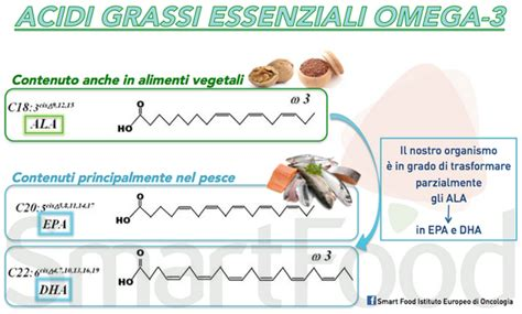alimenti omega 3 non pesce le 5 fonti vegetali di omega 3 greenme