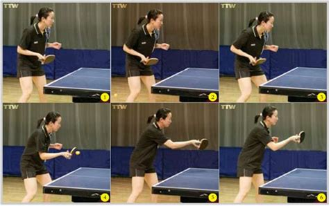 how to play table tennis like a pro table tennis spot