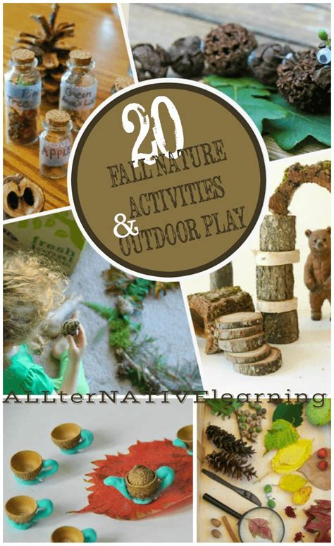 kindergarten activities nature 714 best images about fall and harvest theme for preschool