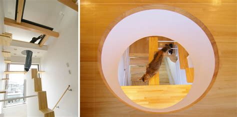 cat friendly house design another amazing cat friendly house design from japan hauspanther