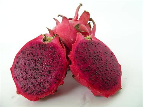 buy dragon fruit plants hylocereus