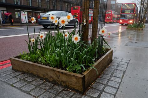 Guerilla Gardening by The Urbanite S Guide To Guerrilla Gardening This