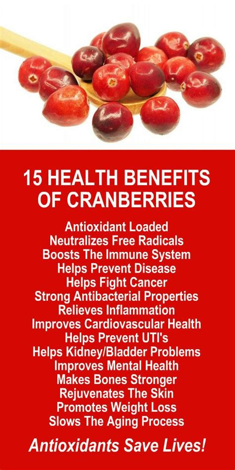 Niacin And Cranberry Detox by Best 25 Niacin Benefits Ideas On Vitamin B