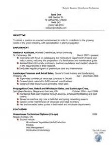 the how resume should look resume format web