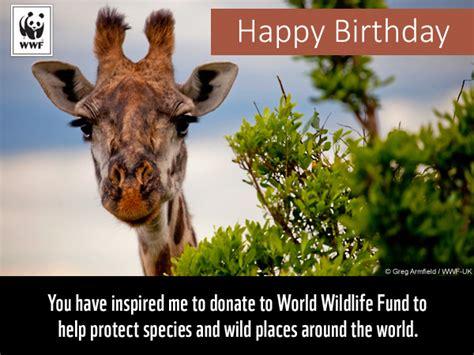 Wwf Free Ecards birthday ecards from wwf free birthday ecards world