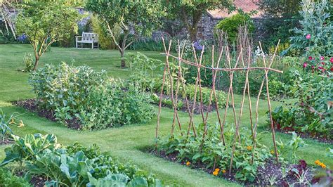 home vegetable garden ideas types   budget