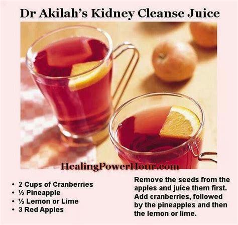 Cranberry Juice Recipe For Detox by Cranberry Punch Recipe Punch Juice And Kidney