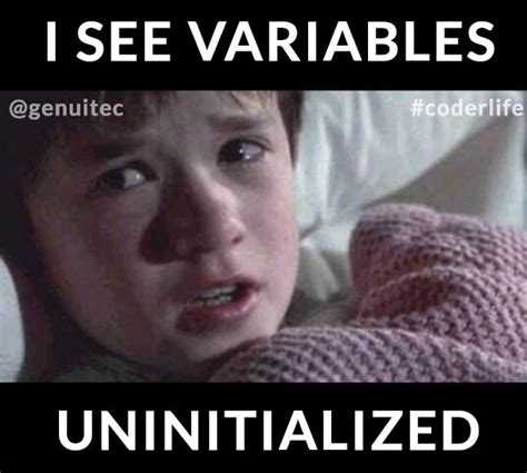 Funny Programming Memes - variables coderlife programmers software engineers