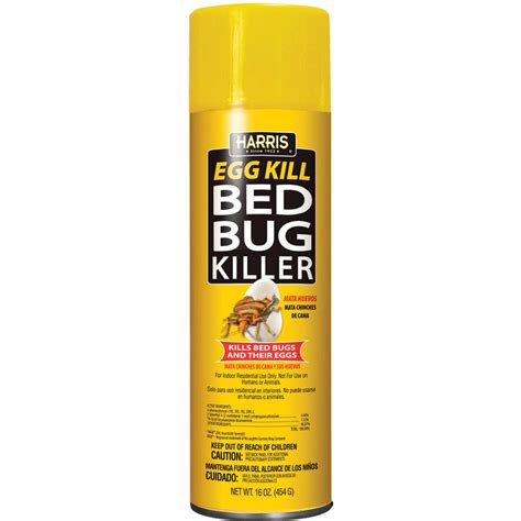 the best bed bug spray how to get rid of stink bugs using repellents and traps slay all pest