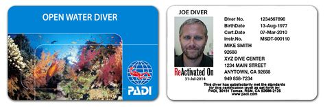 dive card 5 reasons to jump back in with padi reactivate touch