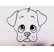 How To Draw A Puppy Face  Adorable Drawing Lesson