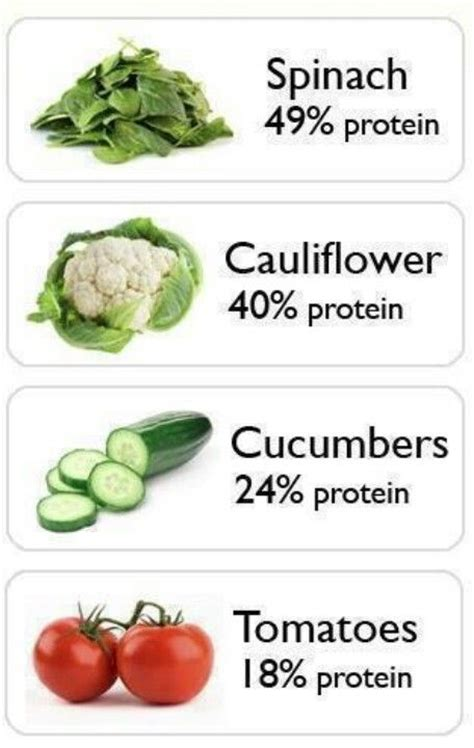 vegetables high in protein high protein vegetarian foods vegetables high in protein