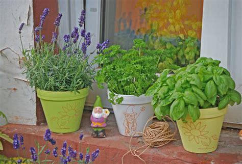 m ckenschutz balkon m 252 ckenschutz diese pflanzen vertreiben m 252 cken mein