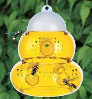 Fliegen Auf Der Terrasse Vertreiben by Fliegen Und Wespen Beim Grillen Vertreiben