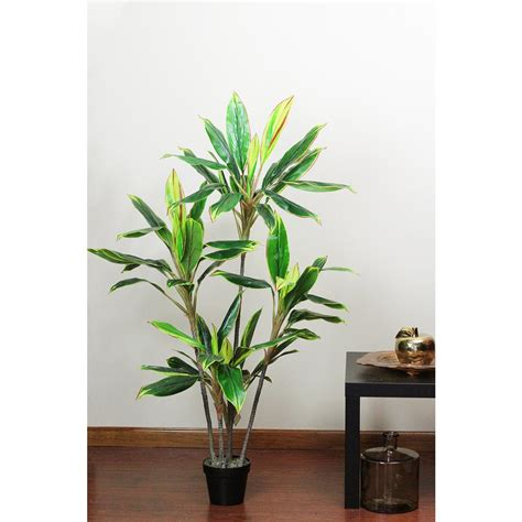 Home Depot Artificial Plants by Northlight 55 25 In Artificial Dracaena Plant In Pot