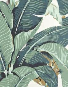25 best ideas about palm wallpaper on pinterest tropical entry products leaves wallpaper and