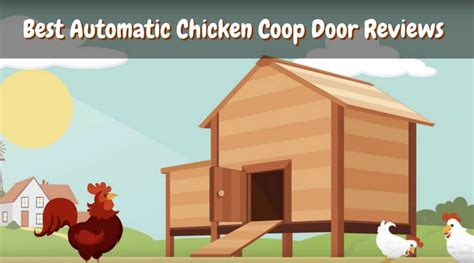 best automatic chicken coop door reviews of 2017