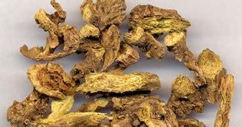 seda k effetti collaterali medicina tradizionale cinese scutellaria hu 225 ng q 237 n 黃苓