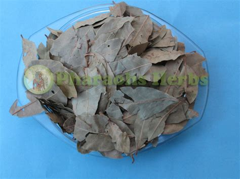 Bay Leaves And Pantry Moths by Pharaohs Herbs