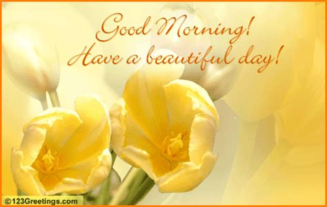 good morning love greetings good morning sms good morning love quotes morning quotes