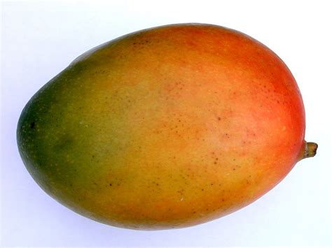Fruit Mango image after photo mango fruit food skin texture green