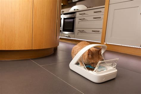 the surefeed microchip pet feeder from sureflap