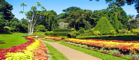 best hotel in kandy sri lanka best things to do in kandy holidays in kandy