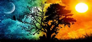 Meaning Of Trees 5 ancient interpretations for the meaning of the tree of