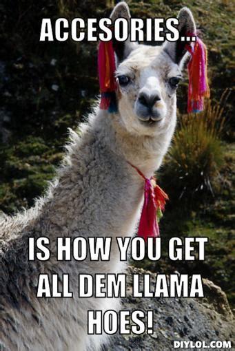 Shaved Llama Meme - shaved llama meme memes