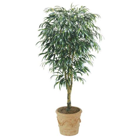 8 foot tree 8 foot artificial ficus alii tree potted w 763