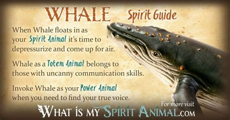 whale symbolism meaning power animal whale symbolism