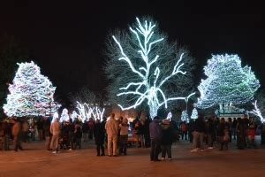 toledo lights at the zoo lights before opens nov 14 toledo