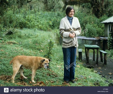 How To Reset Your Dian Nafi the late dian fossey with in rwanda stock photo