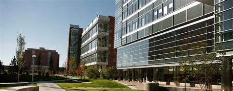 Of Colorado Denver Mba Health Care by Division Of Rheumatology Department Of Medicine