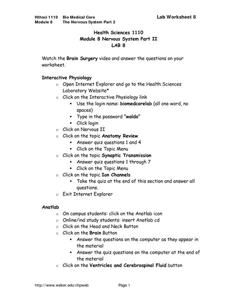 Nervous System Worksheets With Answers