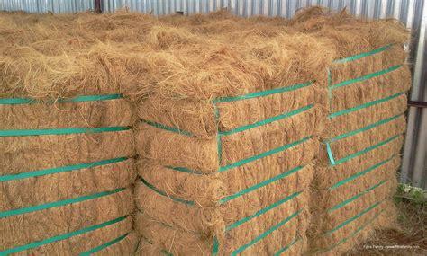Jual Sabut Kelapa Coconut Fiber export coconut fiber serat kelapa from indonesia by pt