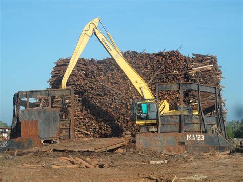 Alat Pemotong Kertas Foto industri kertas lebih suka merusak hutan alam daripada menanam pohon mongabay co id