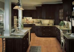 Painting Kitchen Cabinets Dark Brown brown kitchen cabinets on pinterest brown kitchens dark brown